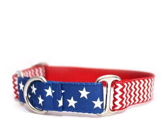 "1"" American Hound martingale dog collar"