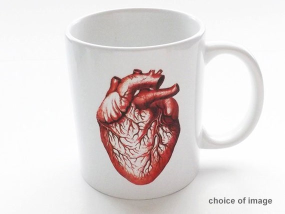 anatomy coffee Mug human doctor office novelty gift male nurse skull brain anatomical heart science medical student cardiology graduation