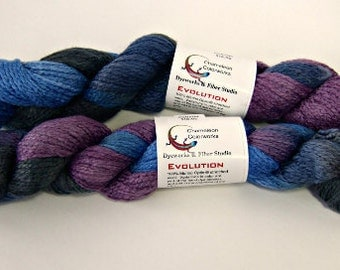 Chameleon Colorworks Evolution Yarn - Midnight