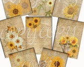 Instant Download    Sunflowers and Daisys -  Printable Digital Collage Sheet