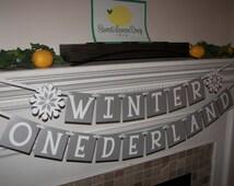 Winter Onederland Banner - Snowflakes - 1st Birthday - First - Silver Metallic Shimmer - Pink