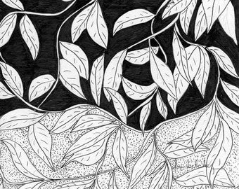 B/W #29 for 30/30 - Original Pen and Ink: More Leaves