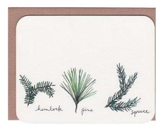 Evergreens card (hemlock, pine, spruce) with envelope