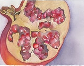 "Pomegranate Rustic Watercolor Painting Print Pomegranate Seeds Persephone Pretty Fruit Art Pretty Poemgranate Art Gift 8"" x 10"" Print"