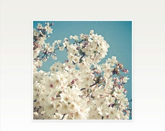 SALE 25% OFF Cherry Blossom Art print, Floral Wall Art - Buds in May