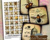 Queen Bee Digital Collage Sheet 1 Inch Collage Sheet Squares for Magnets, Charms, Decoupage, Woodtiles, Scrapbooking, Mixed Media Art