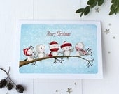 "greeting card - card - birds - christmas - winter -blue - red - ""A Place to Gather - Winter!"""