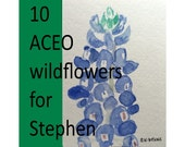 10 ACEOs:  Wildflowers by Nan Henke