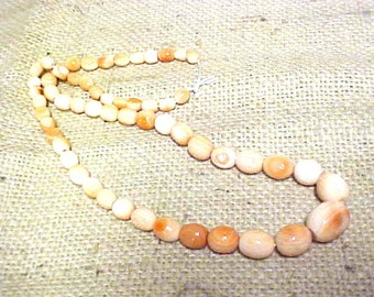 Vintage Strand Coral Shell Pearls Graduated, Natural Striations #A274 FREE SHIPPING