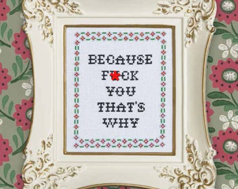 Subversive Cross Stitch Kit: Because F*ck You, That's Why