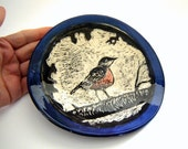 Robin Dish - Serving Plate - Backyard Bird - Cobalt Blue - Black and White - Nature Art - Sgraffito Pottery