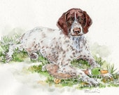 GERMAN WIRE-HAIRED Pointer Original Watercolor on ink print 11x14 Matted Ready to Frame