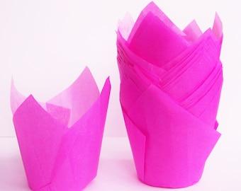 24 Pink Tulip Cupcake Liners