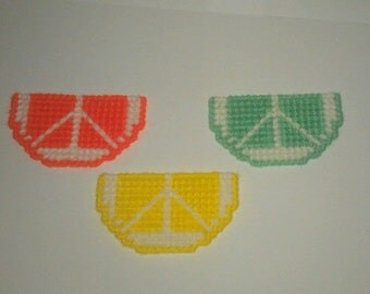 3 Handmade Citrus Fruit Slices Magnets Plastic Canvas