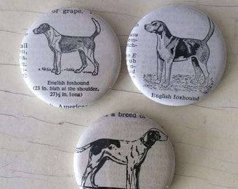 English Foxhound Vintage Dictionary Illustration Magnet Set of 3