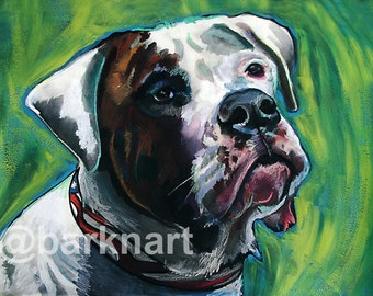 American Bulldog - Print of Original Painting
