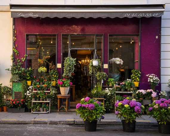 Paris Photo Flower Shop Photograph France Print Purple Paris