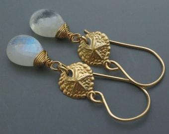 Rainbow Moonstone Gemstone Sand Dollar Link Goldfilled Earrings EE Designs