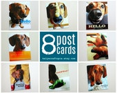 Hello My Friend Assorted Dachshund Postcard Set