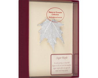 Real Sugar Maple Leaf Dipped In Silver Barpin Brooches - Real Dipped Leaves