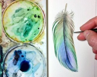 Blue-Green Parrotlet Feather study - Original Watercolour