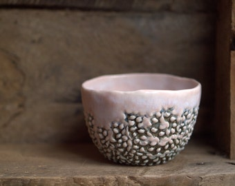 Blister - Small porcelain bowl with great texture.  Tactile, pink ceramic, contemporary one of a kind bowl.  Planter, prep bowl, home decor.