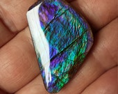 Blue Green Purple Color Changer Ammolite Designer Cabochon