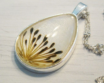 Real Seed Necklace - Herbal Jewelry - Dill Seeds Botanical White Teardrop Necklace