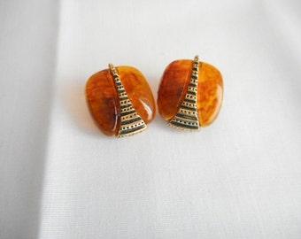Vintage Faux Tortoise Shell Lucite Clip On Earrings