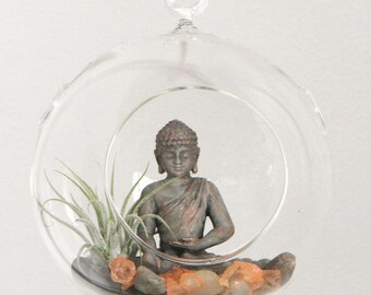 8x8in (20x20cm) Hanging Glass Globe Terrarium Kit