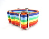 """Houndstown 1"""" Rainbow Stripe Buckle or Martingale Collar, Any Size"""