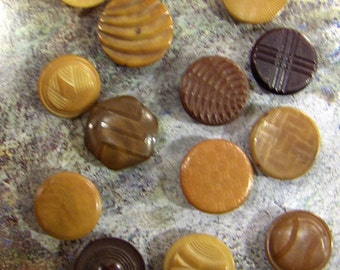 Vintage Vegetable Ivory Buttons Tagua Nut Collection of Fourteen - vestiesteam - epsteam