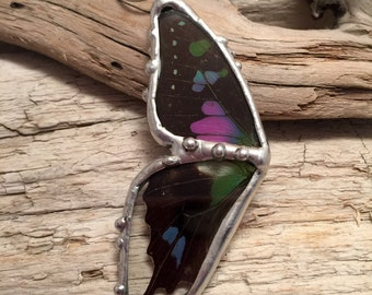 Real Butterfly jewelry, butterfly Wing Necklace, butterfly Pendant, butterfly taxidermy, real butterfly pendant, butterfly