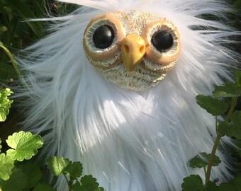 Snow owlet
