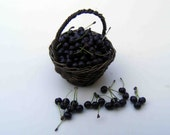 Basket of sour cherries