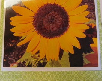 Instagram Photo Card -- Sunflower -- Lime Green -- Greeting Card -- Blank Inside
