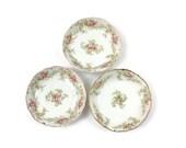 Limoges Fruit Bowls / SET of 3 / Pink and White Roses / Bawo & Dotter (Elite Works) / French Cottage Decor / c1901