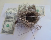 Small Natural Real found bird nest Homeschool Teaching Aid Wreath Photo prop Wildlife display Bridal or baby shower deco LC#5