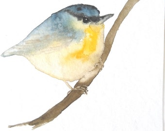 Original Bird Watercolor Painting Nuthatch