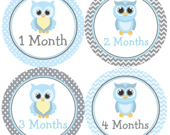 Baby Month Stickers Blue Owl Monthly Belly Labels from 1 to 12 Months in Blue and Grey Chevron and Gray Polka Dots for Baby Boy for Onesie