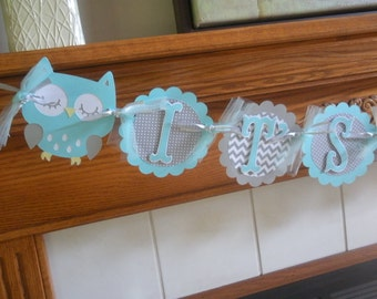 Owl Baby Banner, It's A Boy Owl Banner, Aqua and Gray Baby Shower Banner, Gender Reveal Banner, Baby Boy Shower Banner