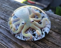 Glass octopus Paperweight #12