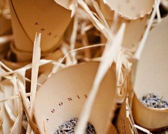 Wedding Reception Ceremony Send Off/Bird Seed or Rice Toss / Food, Popcorn cone / wedding send off / Petal, Confetti, Candy cone, tosser