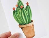 Cactus Greeting Card Little Pink Flowers