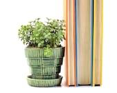 Petite McCoy Green Planter