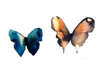 butterfly duo azure ultramarine blue orange and black butterflies. original watercolour painting