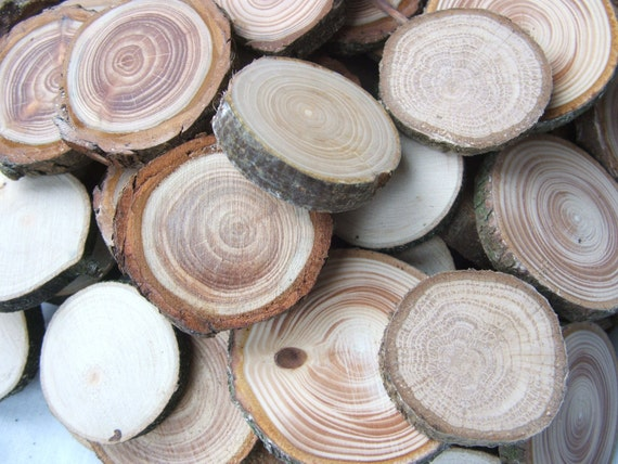 Wood Slices 100 Mixed Wooden Tree Branch Rounds or Discs. 1 Inch to 2 inch Button and Bead blanks. Supplies.