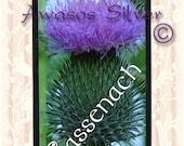 Outlander inspired, Sassenach iPhone case for iPhone 5s or 5c, Clair and Jamie Fraser inspired iPhone case,black or white rubber base.