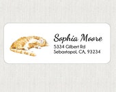 Cat Return Address Labels - Stickers - Personalized - Kitty - Animal - Cat Art - Tabby Orange Cat
