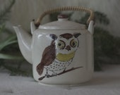 Vintage Owl Tea Pot, Made in Japan